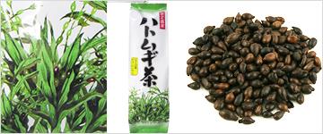国産ハトムギ茶